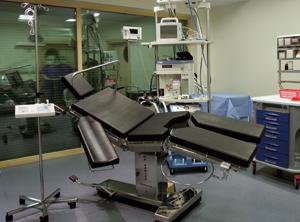 Plastinė ir rekonstrukcinė chirurgija